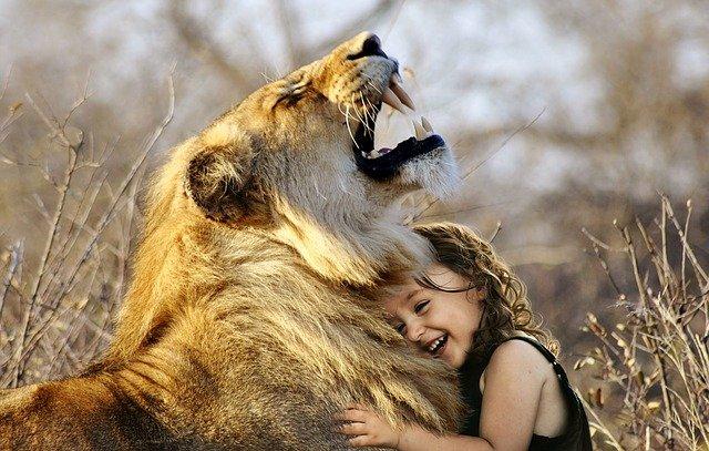 Milujeme zvieratá ako svoje vlastné deti